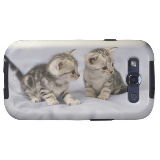 American Shorthair 7 Galaxy S3 Cover