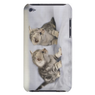 American Shorthair 7 iPod Case-Mate Case
