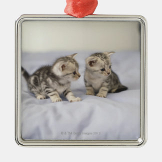 American Shorthair 7 Metal Ornament