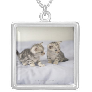 American Shorthair 7 Silver Plated Necklace