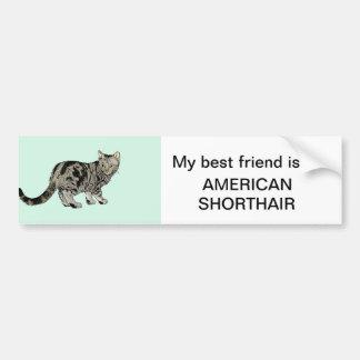 American Shorthair Car Bumper Sticker