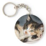 American Shorthair Calico Shelter Kitten Keychain