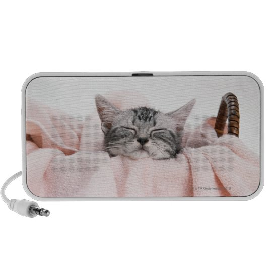 American Shorthair Cat Mini Speaker