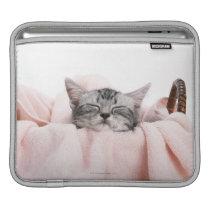 American Shorthair Cat Sleeve For iPads