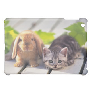 American Shorthair; is the most popular and most iPad Mini Case