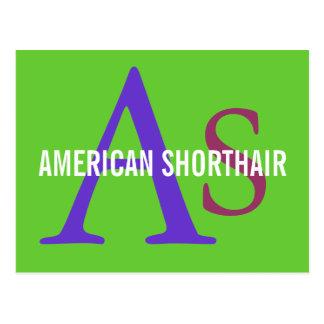American Shorthair Monogram Design Postcard
