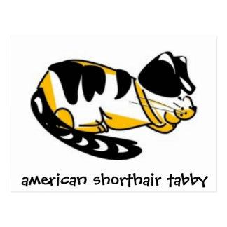 American Shorthair Tabby by ~bluedecker97 Postcard