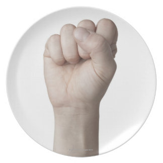 American Sign Language 10 Plate