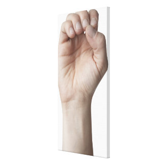 American Sign Language 11