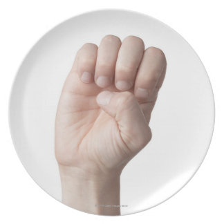 American Sign Language 14 Melamine Plate