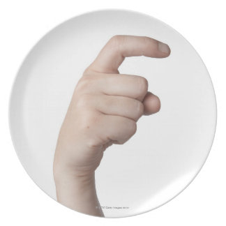 American Sign Language 15 Dinner Plate