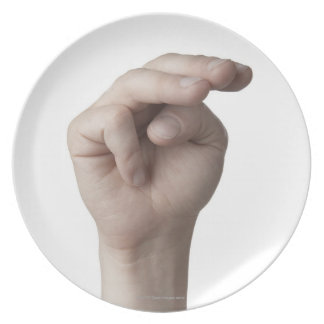 American Sign Language 19 Dinner Plate