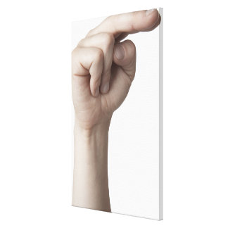 American Sign Language 23 Canvas Print