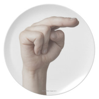 American Sign Language 23 Plate