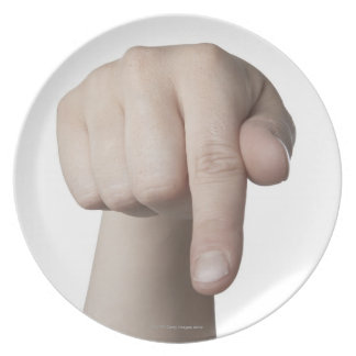 American Sign Language 27 Dinner Plate