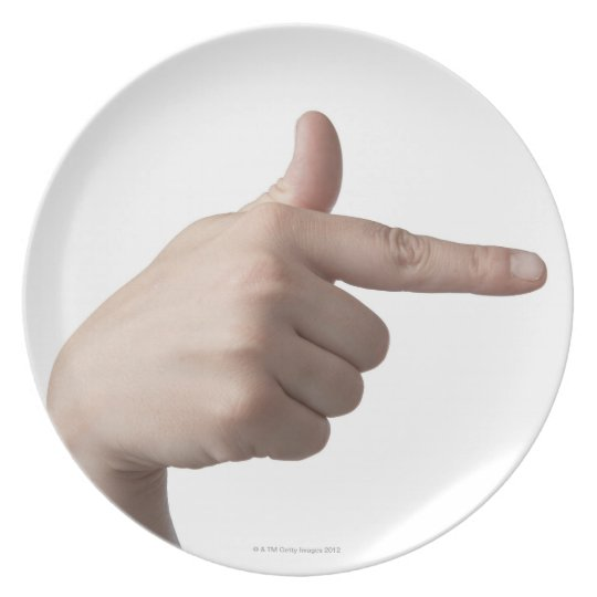 American Sign Language 28 Dinner Plate