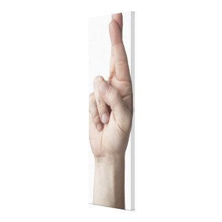American Sign Language 2 Canvas Print