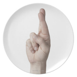 American Sign Language 2 Dinner Plate