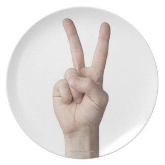 American Sign Language 3 Melamine Plate