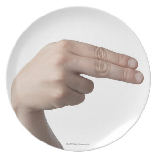 American Sign Language 4 Dinner Plate