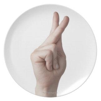American Sign Language 7 Plate