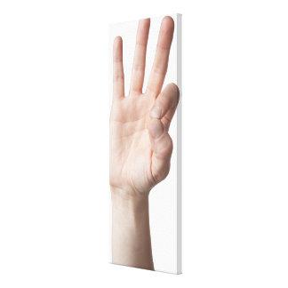 American Sign Language 8 Canvas Print