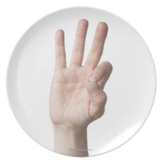 American Sign Language 8 Plate