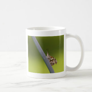 American Snout Butterfly on Green Background Coffee Mug