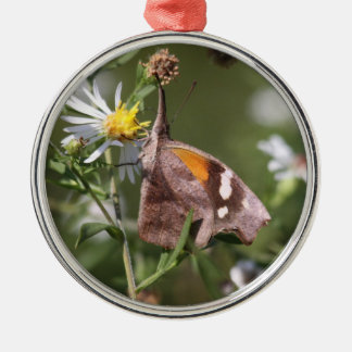 American Snout Metal Ornament