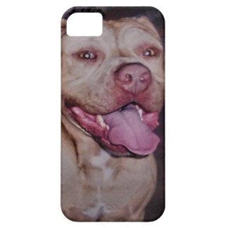 American Staffordshire Bull Terrier, iPhone SE/5/5s Case