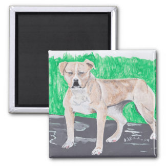 American Staffordshire Terrier 2 Inch Square Magnet