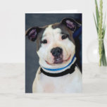 American Staffordshire Terrier-Am Staff Photo Card