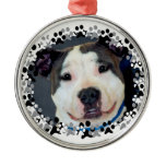 American Staffordshire Terrier-Am Staff Photo Metal Ornament