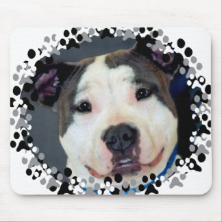 American Staffordshire Terrier-Am Staff Photo Mousepad