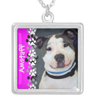American Staffordshire Terrier-Am Staff Photo Necklace