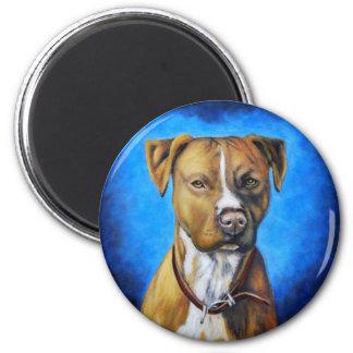 American Staffordshire Terrier - Angel Fridge Magnets