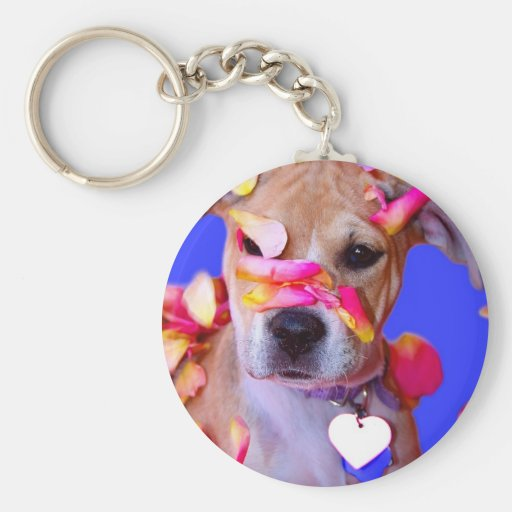 American Staffordshire Terrier Boxer Mix Puppy Dog Key Chains