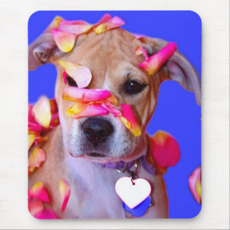 American Staffordshire Terrier Boxer Mix Puppy Dog Mouse Pad
