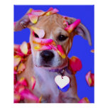 American Staffordshire Terrier Boxer Mix Puppy Dog Print