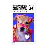 American Staffordshire Terrier Boxer Mix Puppy Dog Stamps