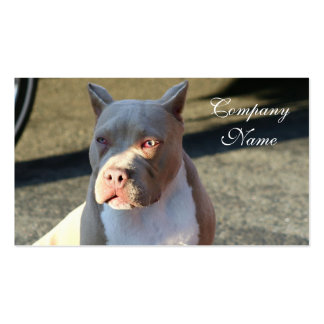 American Staffordshire Terrier Business Cards