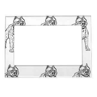 American Staffordshire Terrier Dog Picture Frame Magnets