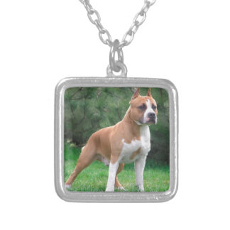American Staffordshire Terrier Dog Silver Plated Necklace