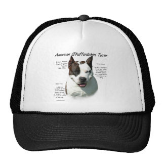 American Staffordshire Terrier History Design Mesh Hat
