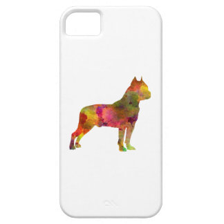 American Staffordshire Terrier in watercolor 2 iPhone SE/5/5s Case