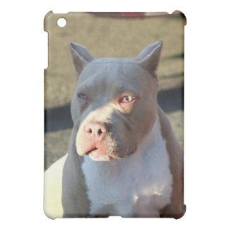 American Staffordshire Terrier ipad Speck case iPad Mini Case