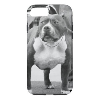 American Staffordshire terrier iPhone 8/7 Case