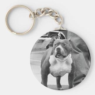 American Staffordshire Terrier keychain