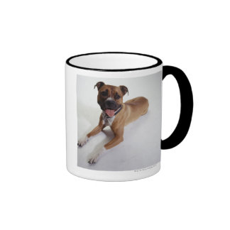 American Staffordshire Terrier lying down, Coffee Mugs