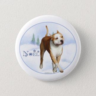 American Staffordshire Terrier Noel - Button